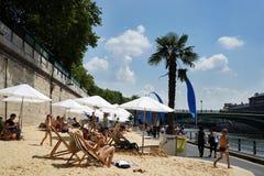 Free Paris Plages Sand Palm Tree Seine Riverbabk Royalty Free Stock Photo - 42835305