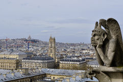 Paris roofs with a birds-eye view from Notre Dame de Paris Stock Images