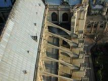 Paris - sikt av Notre-Dame från klockatornet Royaltyfri Fotografi