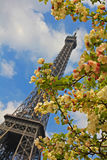 Paris in the Spring Stock Photo