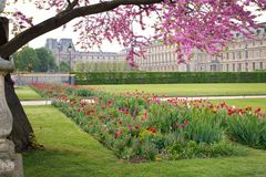 Paris Spring at the Tuileries Royalty Free Stock Photos