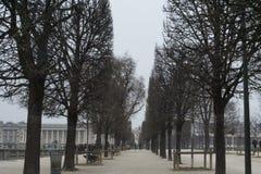 paris springtime Royaltyfria Bilder