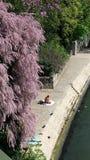 paris springtime Arkivfoton