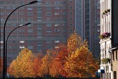 Paris suburb in autumn season Royalty Free Stock Photo