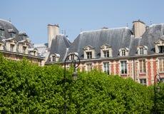 Paris tänder forntida byggnad i ljus grönskatappning arkivbild
