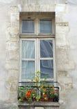 paris tappningfönster Arkivfoto
