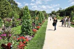 Paris - trädgård av växter Arkivfoton