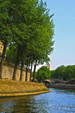 Paris, Trees Along the River Seine Royalty Free Stock Photography