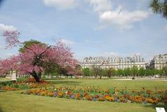 Paris - tuileries dos les Fotos de Stock Royalty Free