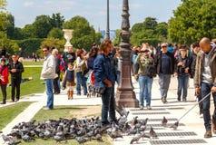 Paris. Tuileries Garden Royalty Free Stock Photo