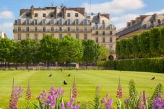 Paris Tuileries Spring Stock Image