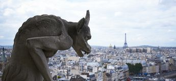 Paris, view from Notre Dame Royalty Free Stock Photos