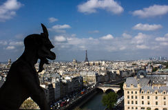Paris view from Notre Dame Royalty Free Stock Image