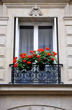 Paris window with geranium flowers Stock Images