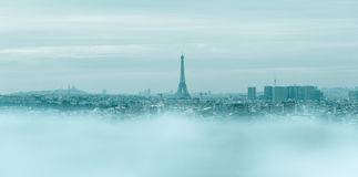 Paris in winter Royalty Free Stock Photo