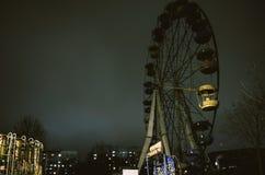 Pariserhjul i parkera Royaltyfri Bild
