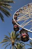 Pariserhjul och palmträd Arkivbild