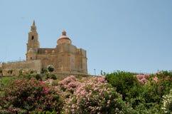 Parish Church of Mellieha, Malta, on summer. Parish Church of Mellieha, Malta, sumer time, surrounded by flowers Royalty Free Stock Photo