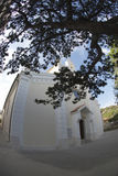 The parish church of St. Trinity and old tree in Baska on island Krk,Croatia royalty free stock image