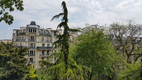 Parisian buildings behind trees Royalty Free Stock Photo