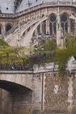 Parisian cathedral Stock Image