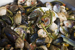Parisian clam bake Royalty Free Stock Photography