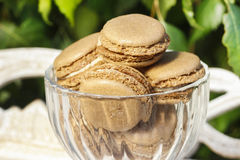 Parisian macarons in glass goblet Royalty Free Stock Photos