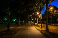 parisian street Obrazy Royalty Free