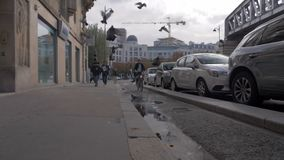 Parisian street with walking, cycling people and flying pigeons, France. Paris, France - September 29, 2017: Slow motion steadicam shot of people walking and man stock footage