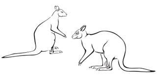parkänguru stock illustrationer