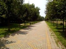 Park stock foto