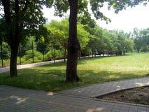 Park Stock Afbeelding