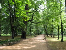 In the park. Park at Wilanow palace, Warsaw, Poland Stock Images