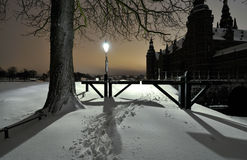 Park. Street lamp in the park at night Stock Image