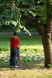 In the park. A couple kissing in the park Royalty Free Stock Image