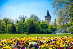 park Royaltyfri Bild