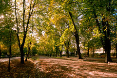 Park. Image showing the Central Park in Cluj-Napoca, Romania on a sunny autumn afternoon royalty free stock images