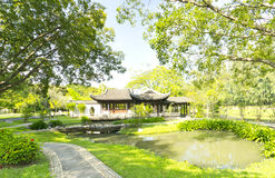 Park. The scene of the chinese garden Stock Images
