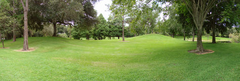 Park. Panorama of park with field in the foreground and trees royalty free stock photos