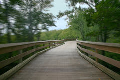 Park. Photo of walkway with a Blur Royalty Free Stock Photo