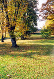 Park. Landscape of a park in autumn Stock Photography