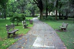 park Royaltyfria Foton