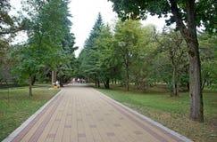 Park lizenzfreie stockbilder