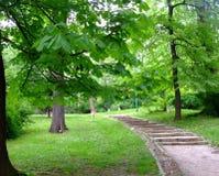 Park. Walk in old park in Sarajevo Royalty Free Stock Photos