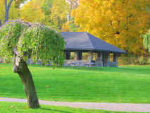 Park. With bright green grass in the fall stock photo