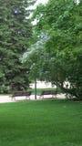 Park Fotografia Stock