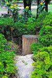 Park 2 Stockbilder
