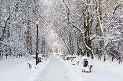 Park abgedeckt mit Schnee lizenzfreie stockfotografie