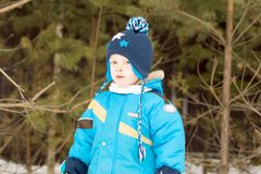 A child boy takes a walk in a winter forest stock photo
