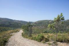 Park of Alfusqueiro Stock Image